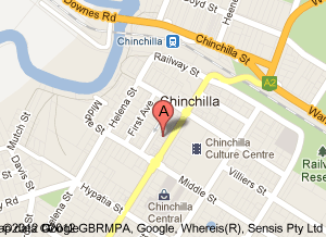 Go Vita Chinchilla Store